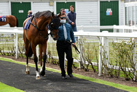 Great_Yarm_Racing_15July-6