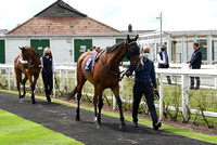 Great_Yarm_Racing_15July-7